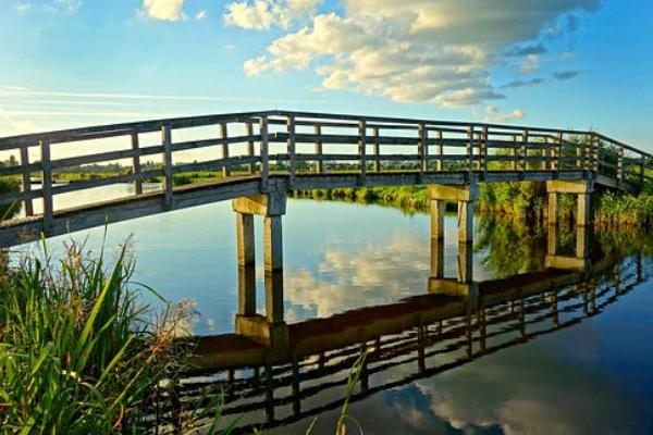 Мостови округа Горског