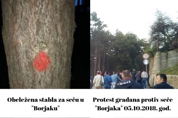 обележени бор и протест грађана